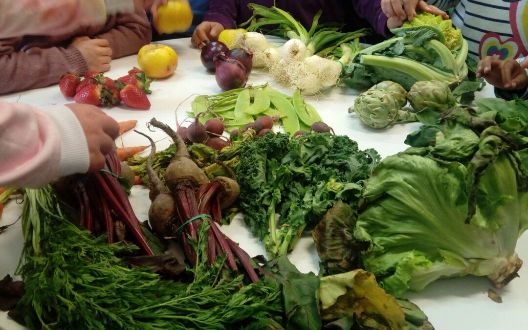 Alimentación sostenible: Razones para iniciar el cambio en los comedores escolares